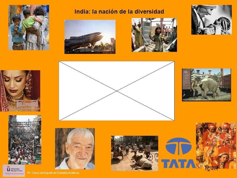 India: la nación de la diversidad R 3. Curso de Experto en Estudios Asiáticos.