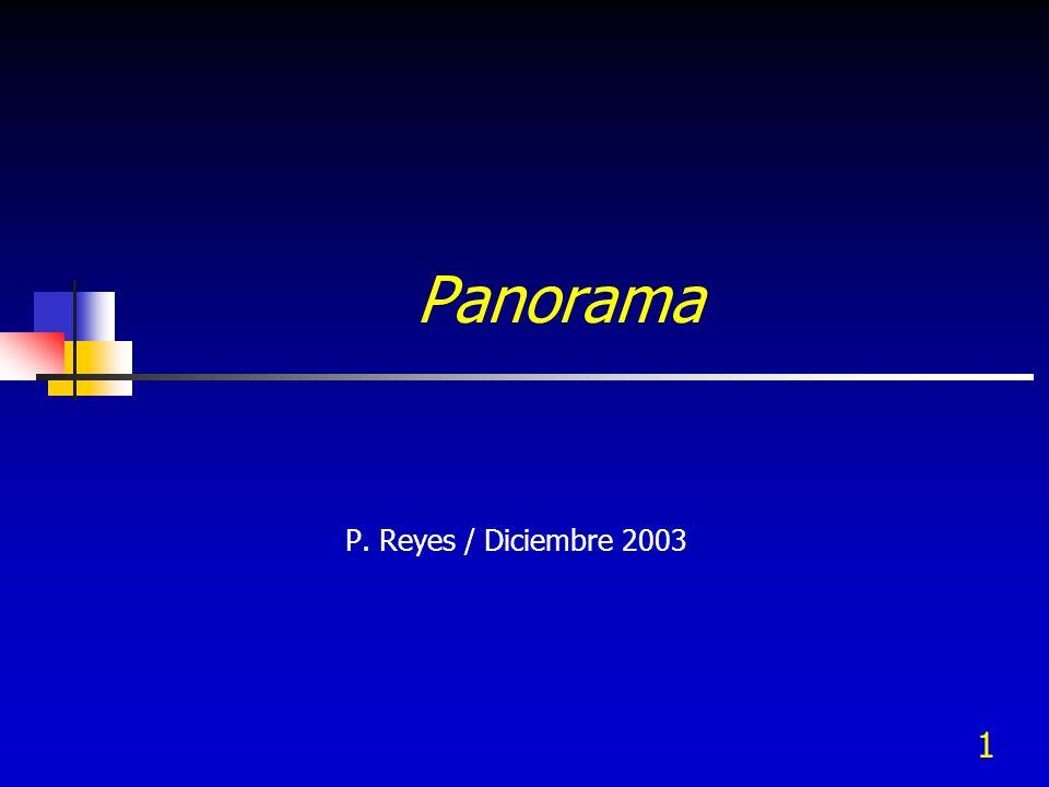 1 Panorama P. Reyes / Diciembre 2003