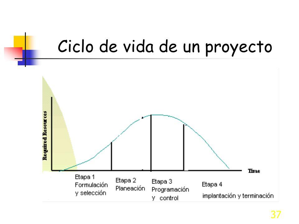 37 Ciclo de vida de un proyecto
