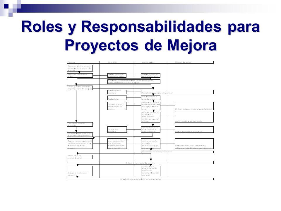 Roles y Responsabilidades para Proyectos de Mejora