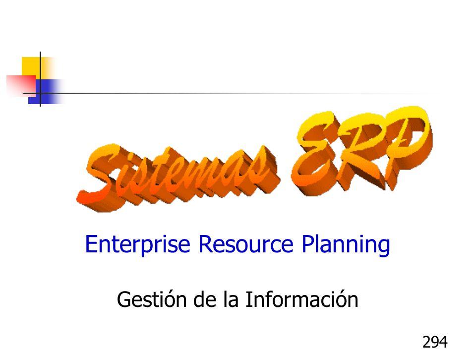 294 Enterprise Resource Planning Gestión de la Información