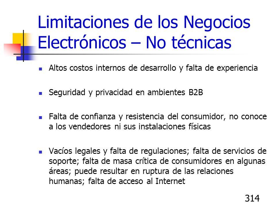 314 Limitaciones de los Negocios Electrónicos – No técnicas Altos costos internos de desarrollo y falta de experiencia Seguridad y privacidad en ambie