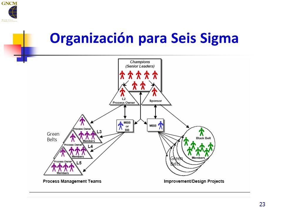 Organización para Seis Sigma 23 Green Belts Green Belts