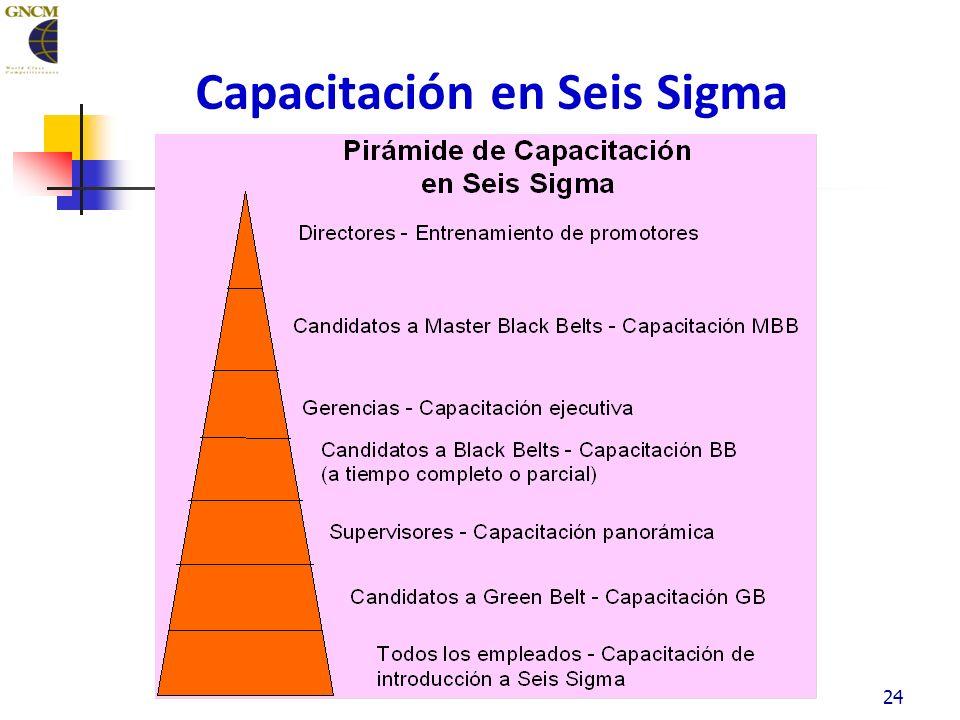Capacitación en Seis Sigma 24