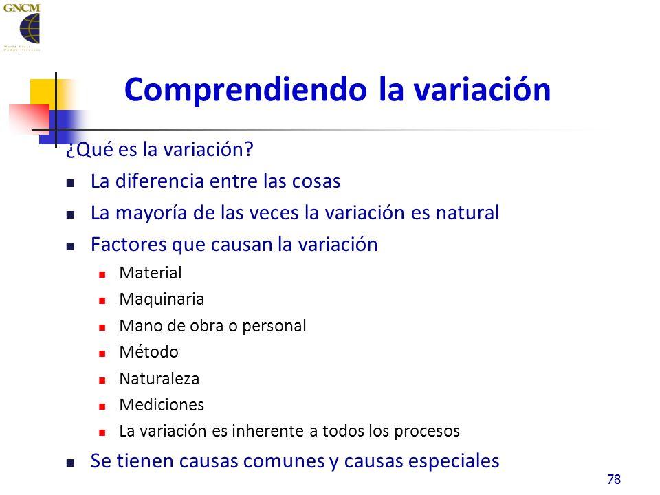 Comprendiendo la variación ¿Qué es la variación.