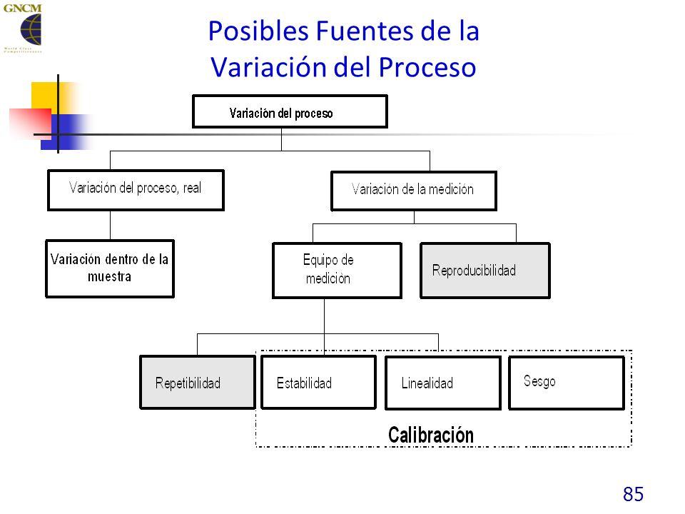 85 Posibles Fuentes de la Variación del Proceso