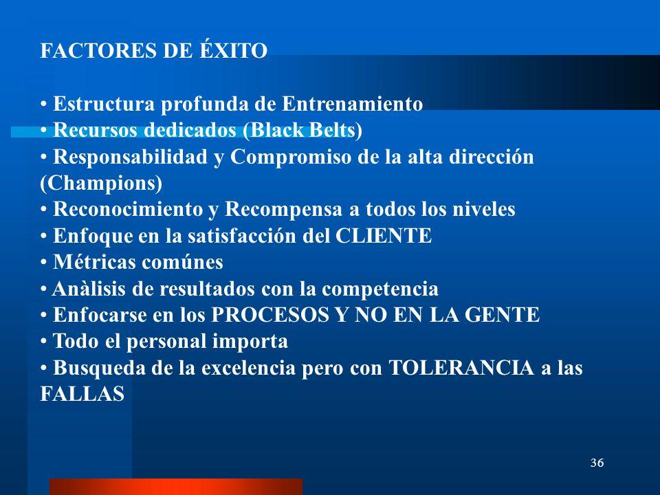 36 FACTORES DE ÉXITO Estructura profunda de Entrenamiento Recursos dedicados (Black Belts) Responsabilidad y Compromiso de la alta dirección (Champion