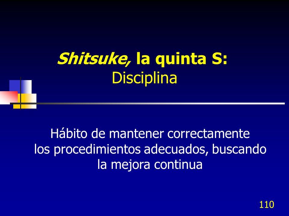 110 Hábito de mantener correctamente los procedimientos adecuados, buscando la mejora continua Shitsuke, la quinta S: Disciplina