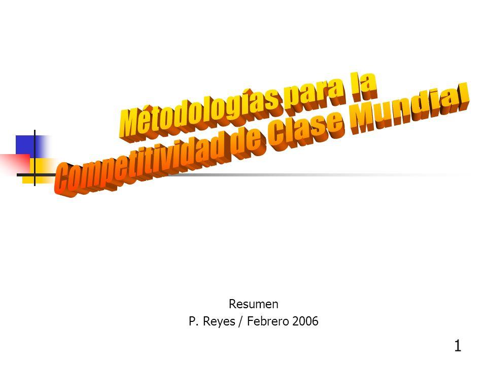1 Resumen P. Reyes / Febrero 2006