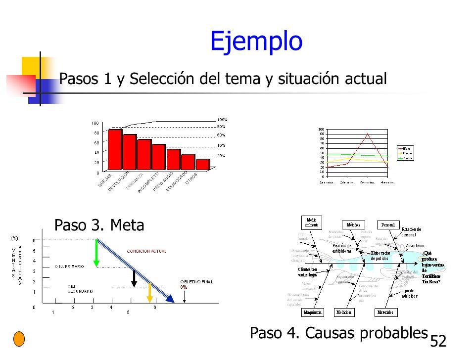 52 Ejemplo Pasos 1 y Selección del tema y situación actual Paso 3. Meta Paso 4. Causas probables