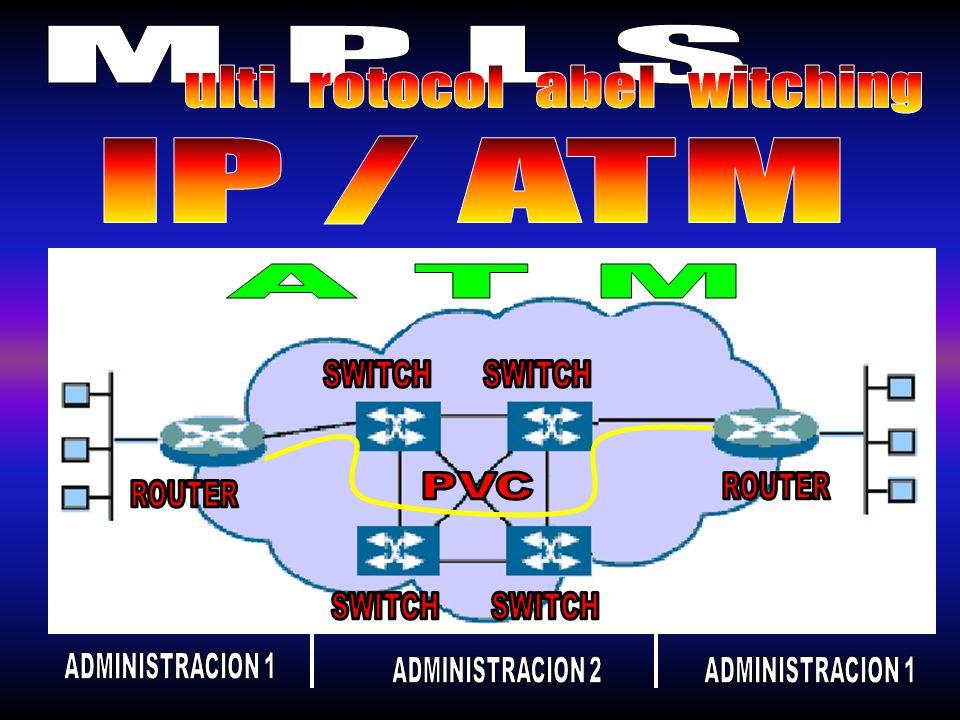 Pero surgieron problemas en la tecnologia IPATM: Se tienen dos redes separadas que funcionan de distinta forma Precio Escalabilidad Velocidad y retardo Control de la ruta