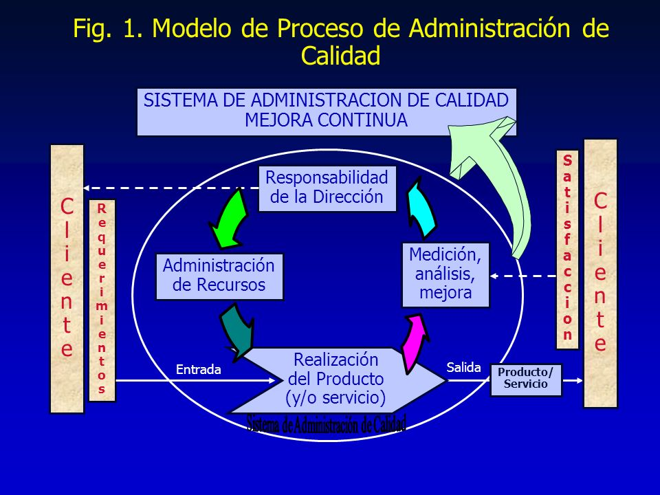ISO 9000:2000 55 INTERPRETACION 5.