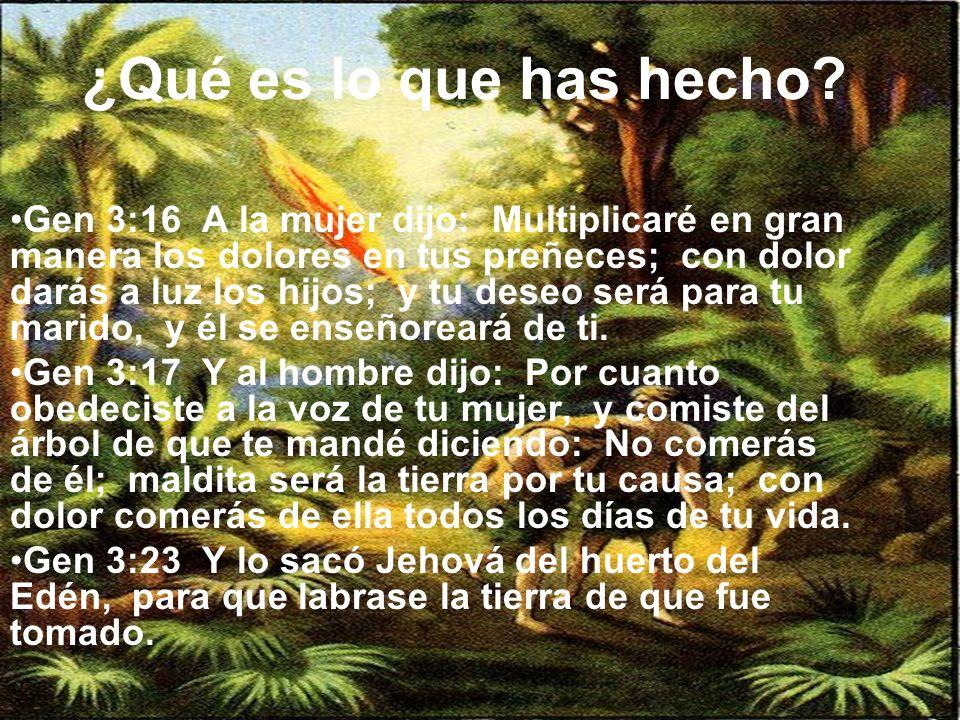 ¿Qué es lo que has hecho? Gen 3:16 A la mujer dijo: Multiplicaré en gran manera los dolores en tus preñeces; con dolor darás a luz los hijos; y tu des