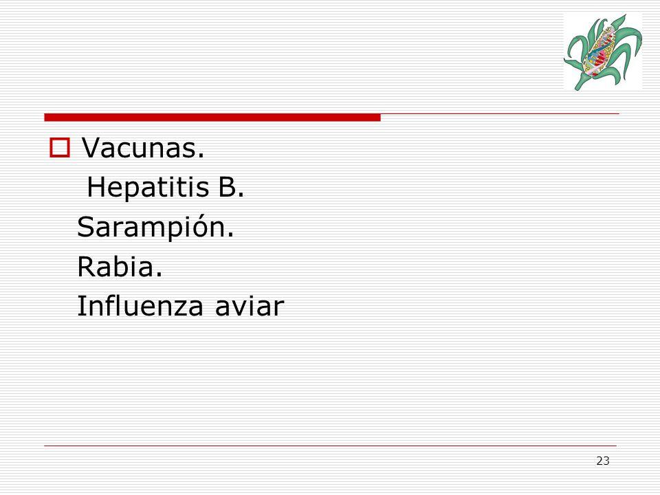24 Vacunas Ej.