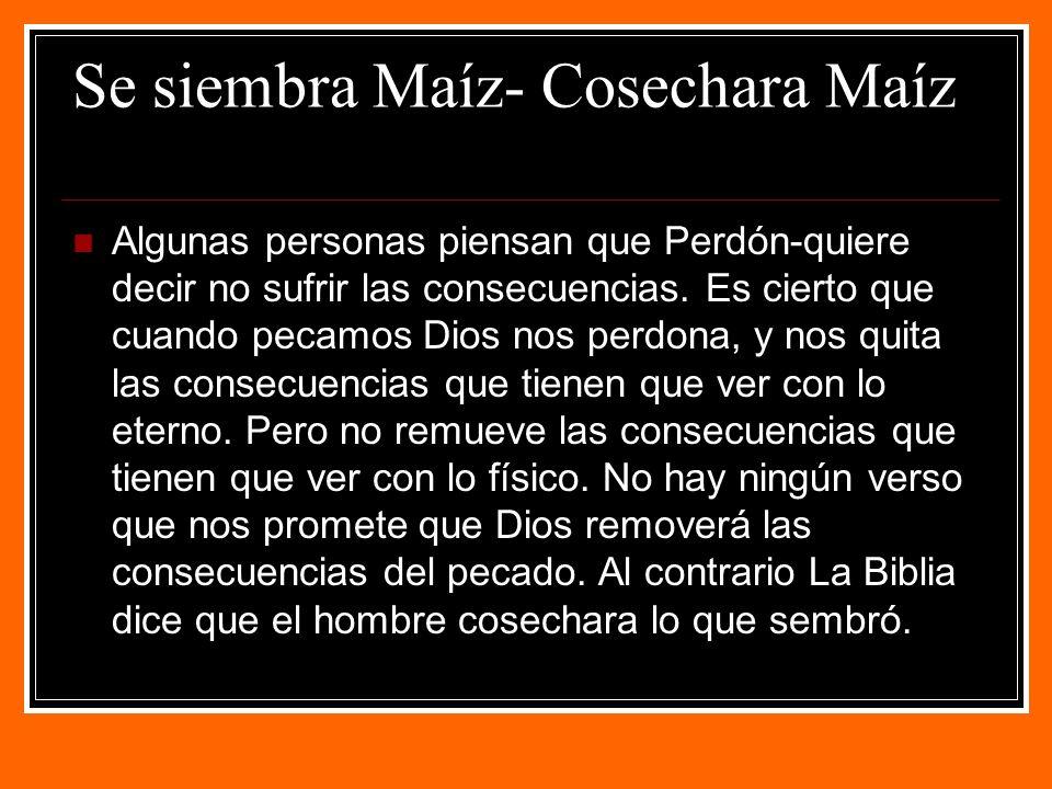 Se siembra Maíz- Cosechara Maíz Algunas personas piensan que Perdón-quiere decir no sufrir las consecuencias.