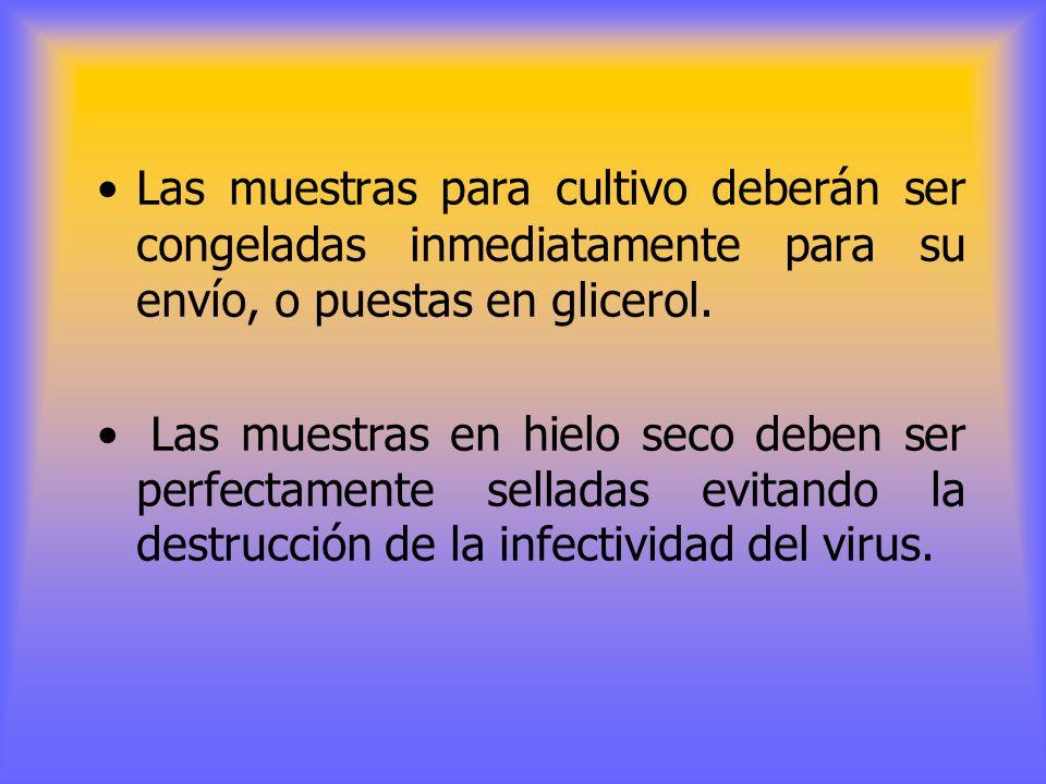 RECOLECCIÓN DE MUESTRAS PARA LABORATORIO Líquido vesicular obtenido asépticamente en un recipiente estéril, raspado de la lesión o epitelio desprendid
