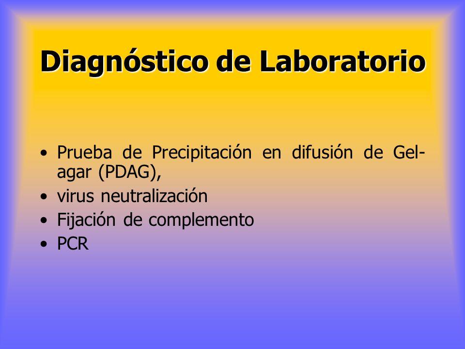 DIAGNÓSTICO EPIDEMIOLÓGICO Se basa en la conducta epidemiológica de la enfermedad en los rebaños susceptibles. conocer la distribución geográfica de l