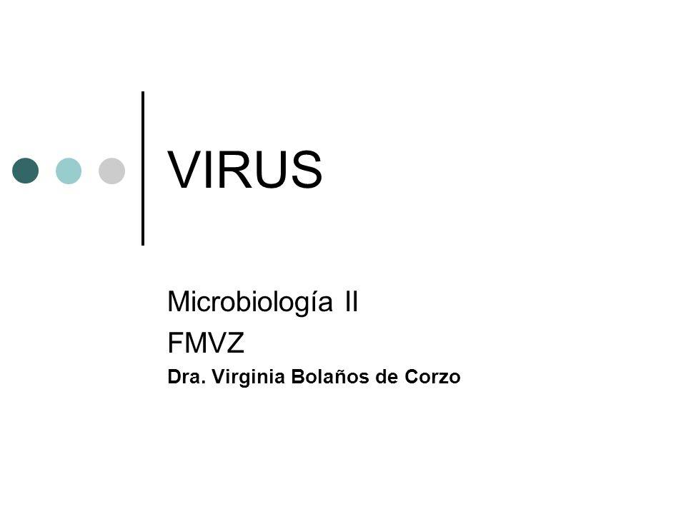 VIRUS Microbiología II FMVZ Dra. Virginia Bolaños de Corzo