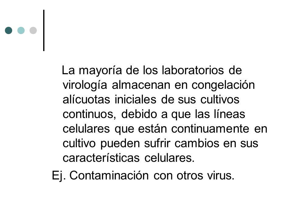 La mayoría de los laboratorios de virología almacenan en congelación alícuotas iniciales de sus cultivos continuos, debido a que las líneas celulares