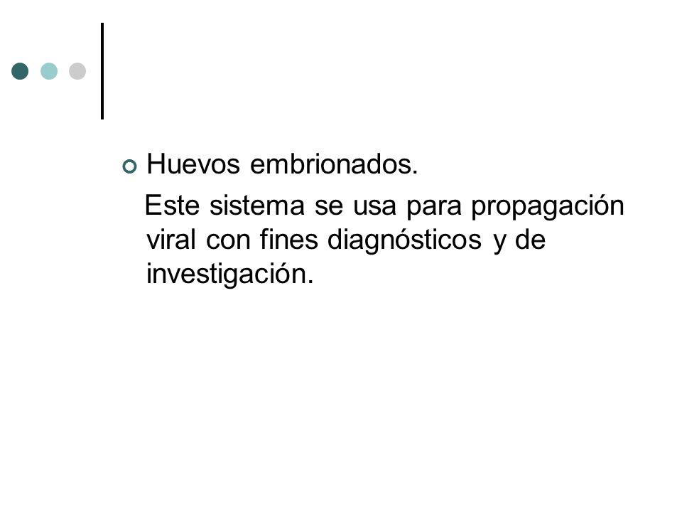 Huevos embrionados. Este sistema se usa para propagación viral con fines diagnósticos y de investigación.