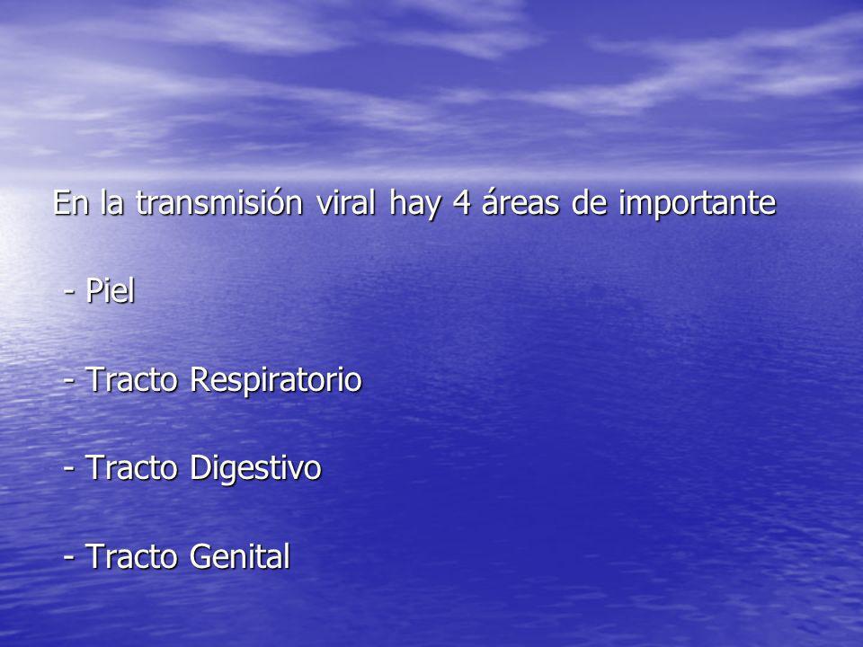 En la transmisión viral hay 4 áreas de importante - Piel - Piel - Tracto Respiratorio - Tracto Respiratorio - Tracto Digestivo - Tracto Digestivo - Tr