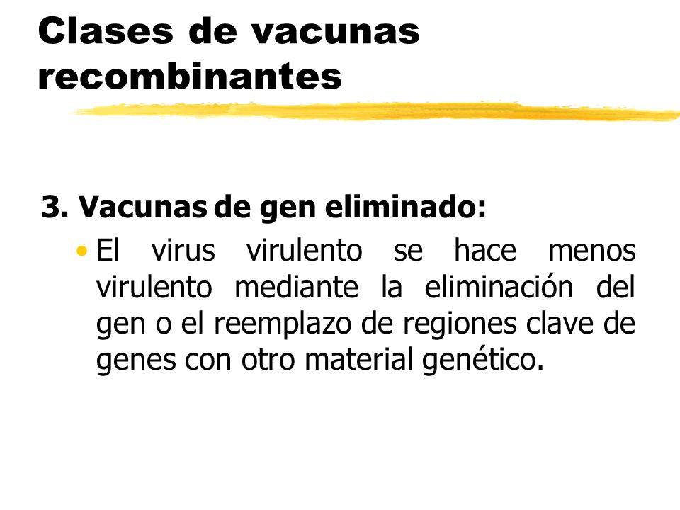 Clases de vacunas recombinantes 3. Vacunas de gen eliminado: El virus virulento se hace menos virulento mediante la eliminación del gen o el reemplazo