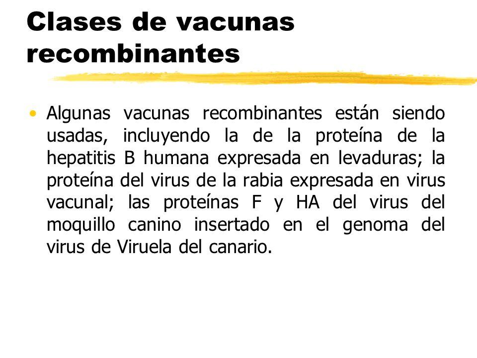 Clases de vacunas recombinantes Algunas vacunas recombinantes están siendo usadas, incluyendo la de la proteína de la hepatitis B humana expresada en