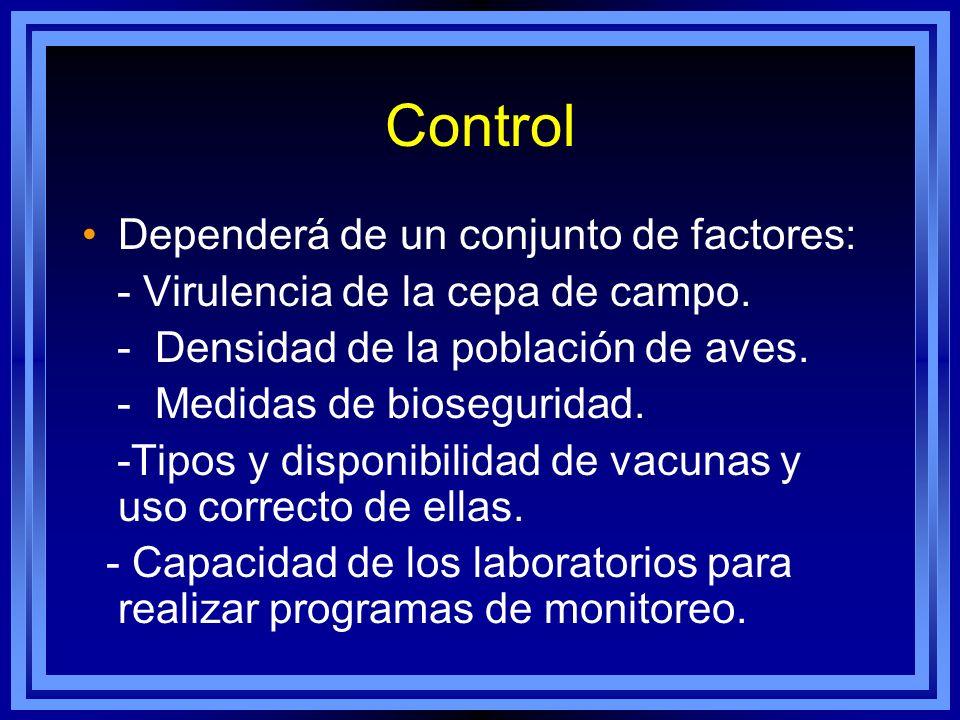 Control Dependerá de un conjunto de factores: - Virulencia de la cepa de campo. - Densidad de la población de aves. - Medidas de bioseguridad. -Tipos