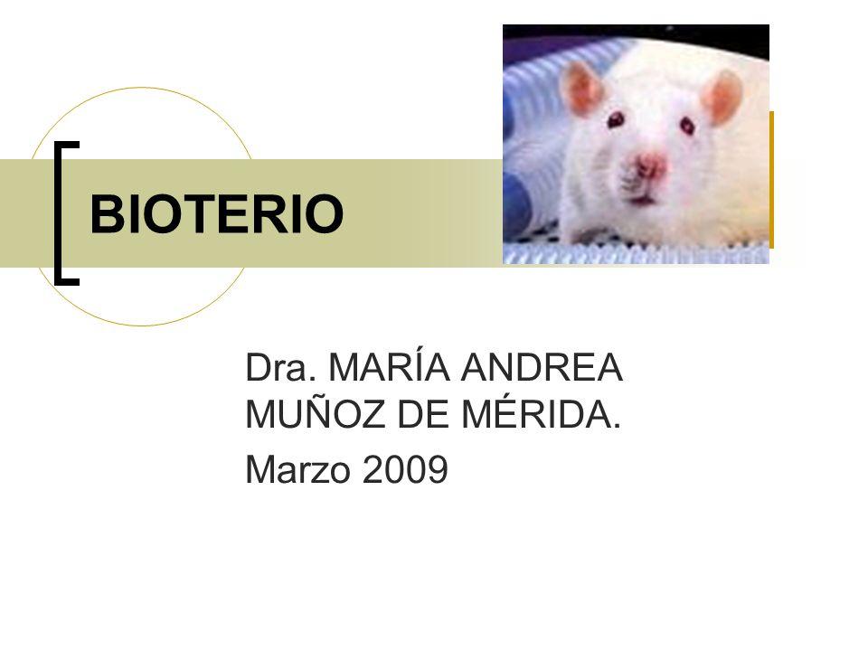 DEFINICIÓN Lugar físico donde se alojan, crían y utilizan animales de laboratorio que cuentan con una calidad genética y microbiológica definida.