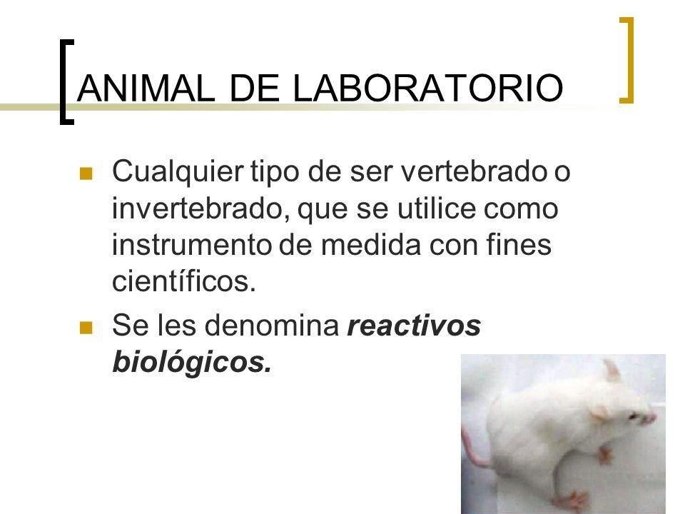CATEGORÍA DE LOS ANIMALES DE LABORATORIO CONVENCIONALES LIBRES DE PATÓGENOS ESPECÍFICOS SPF Microbiota intestinal normal, control periódico.