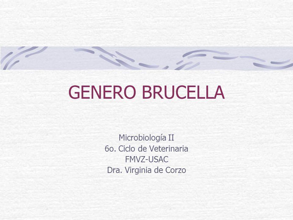 GENERO BRUCELLA Microbiología II 6o. Ciclo de Veterinaria FMVZ-USAC Dra. Virginia de Corzo