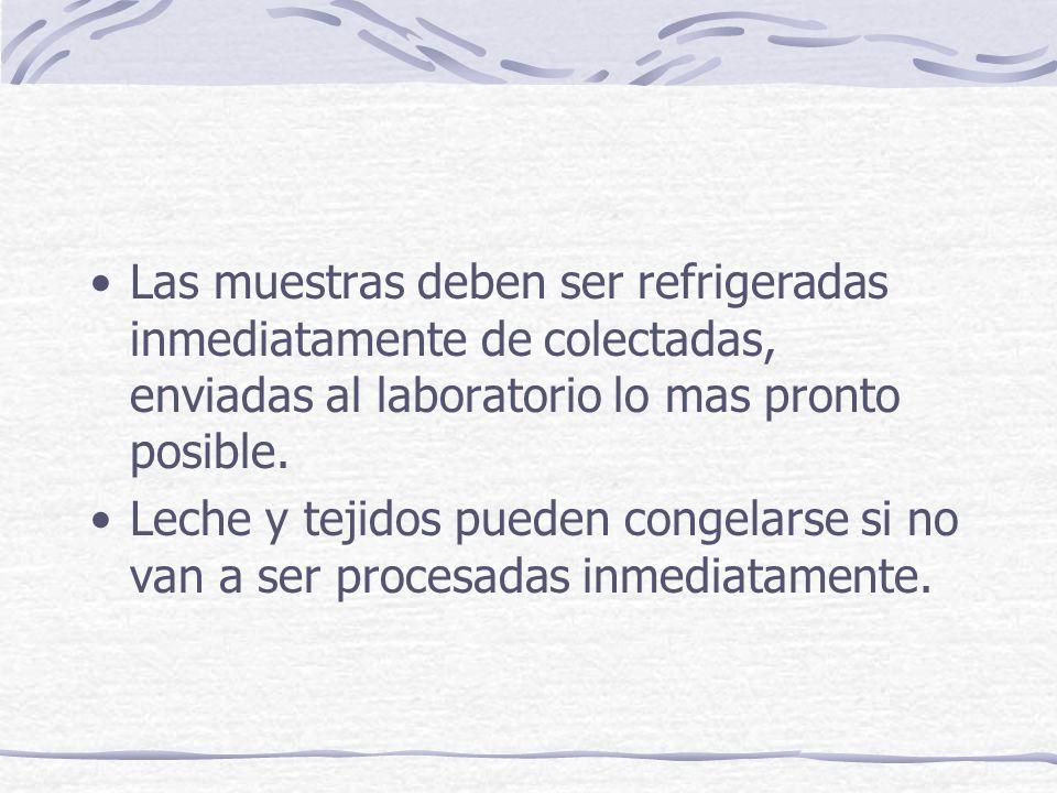 Las muestras deben ser refrigeradas inmediatamente de colectadas, enviadas al laboratorio lo mas pronto posible. Leche y tejidos pueden congelarse si