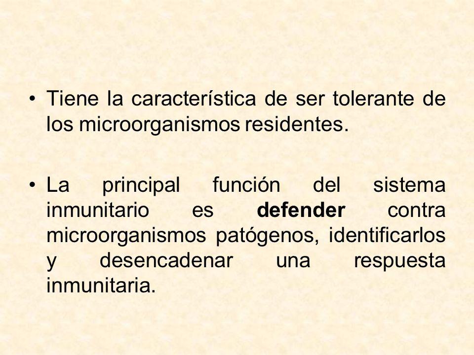 Tiene la característica de ser tolerante de los microorganismos residentes. La principal función del sistema inmunitario es defender contra microorgan