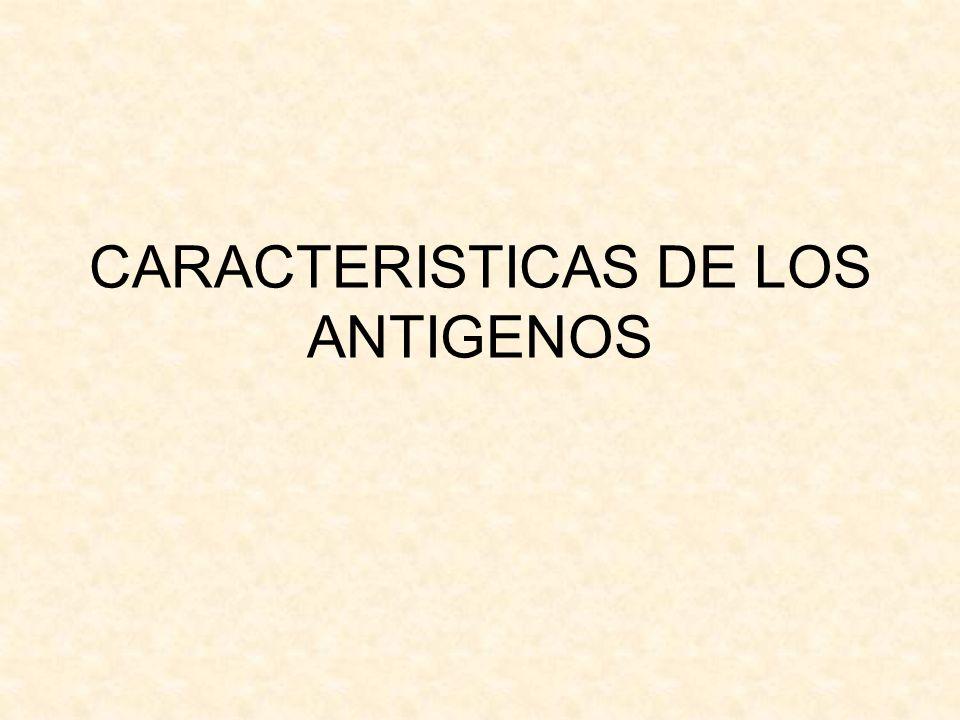 CARACTERISTICAS DE LOS ANTIGENOS
