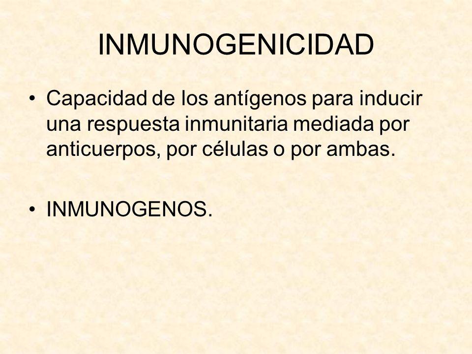 INMUNOGENICIDAD Capacidad de los antígenos para inducir una respuesta inmunitaria mediada por anticuerpos, por células o por ambas. INMUNOGENOS.