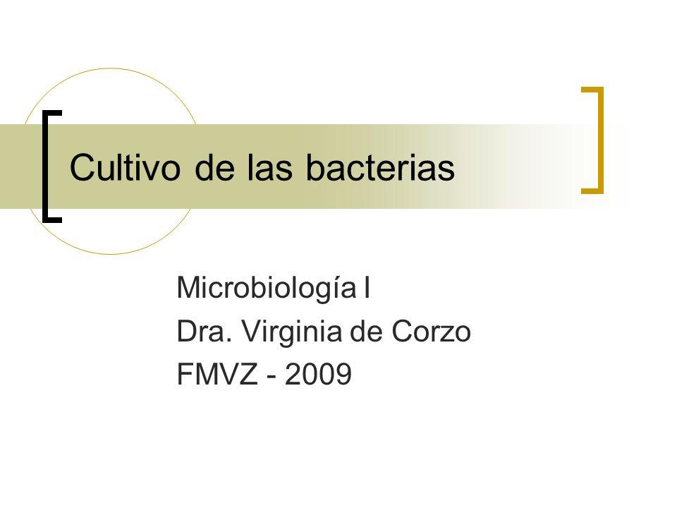 Cultivo de las bacterias Microbiología I Dra. Virginia de Corzo FMVZ - 2009