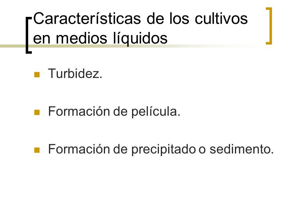 Características de los cultivos en medios líquidos Turbidez. Formación de película. Formación de precipitado o sedimento.