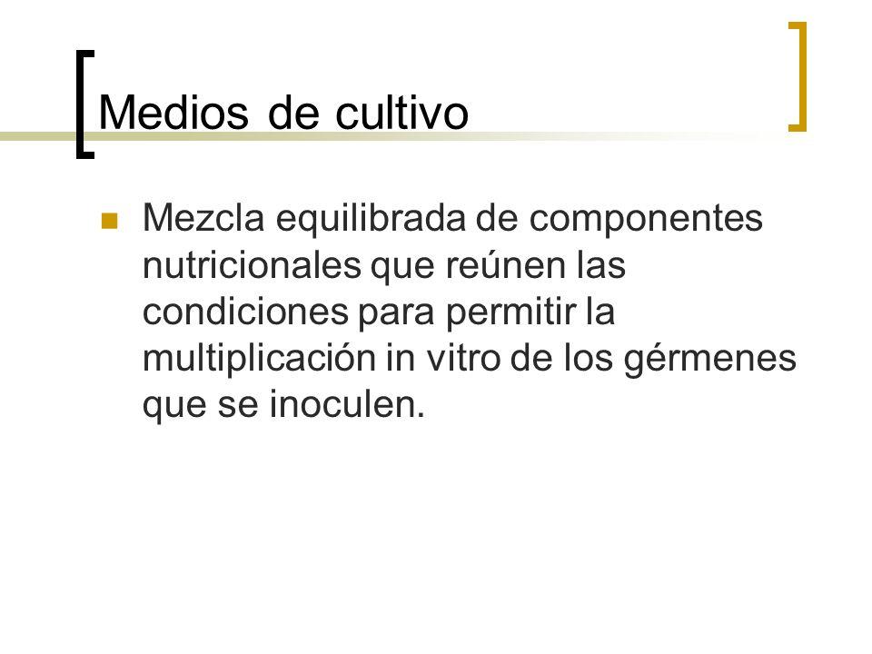 Medios de cultivo Mezcla equilibrada de componentes nutricionales que reúnen las condiciones para permitir la multiplicación in vitro de los gérmenes