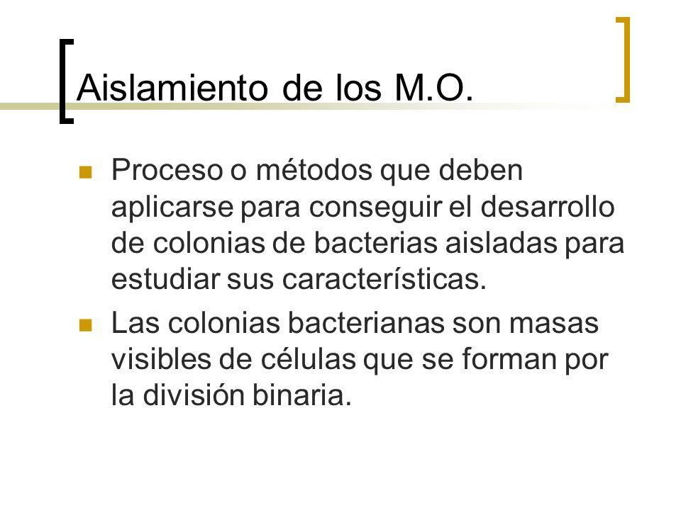 Aislamiento de los M.O. Proceso o métodos que deben aplicarse para conseguir el desarrollo de colonias de bacterias aisladas para estudiar sus caracte