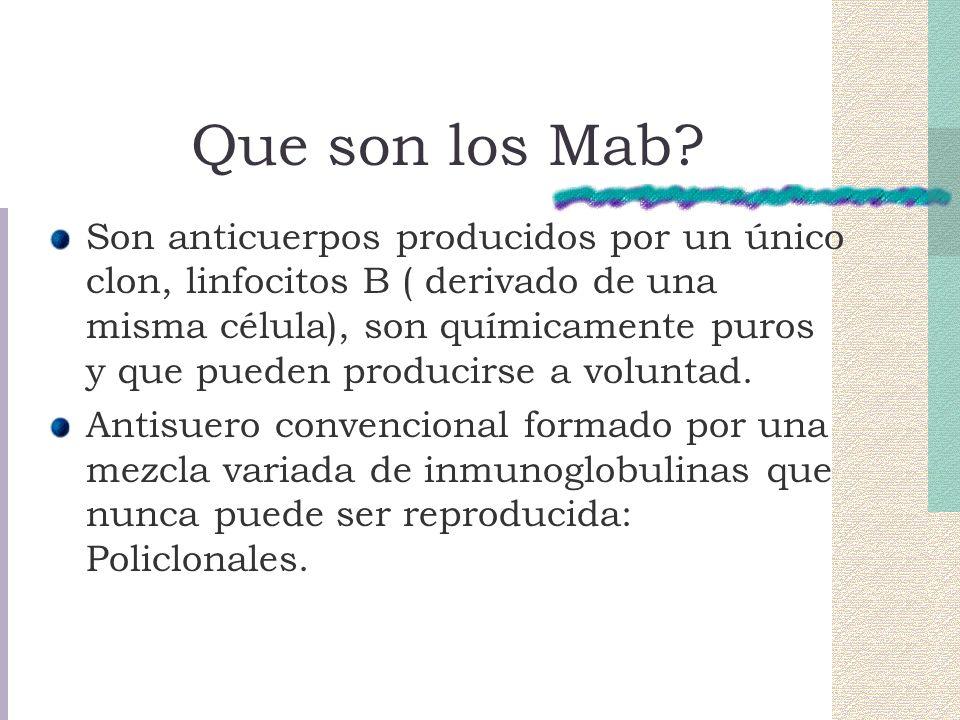 Que son los Mab.