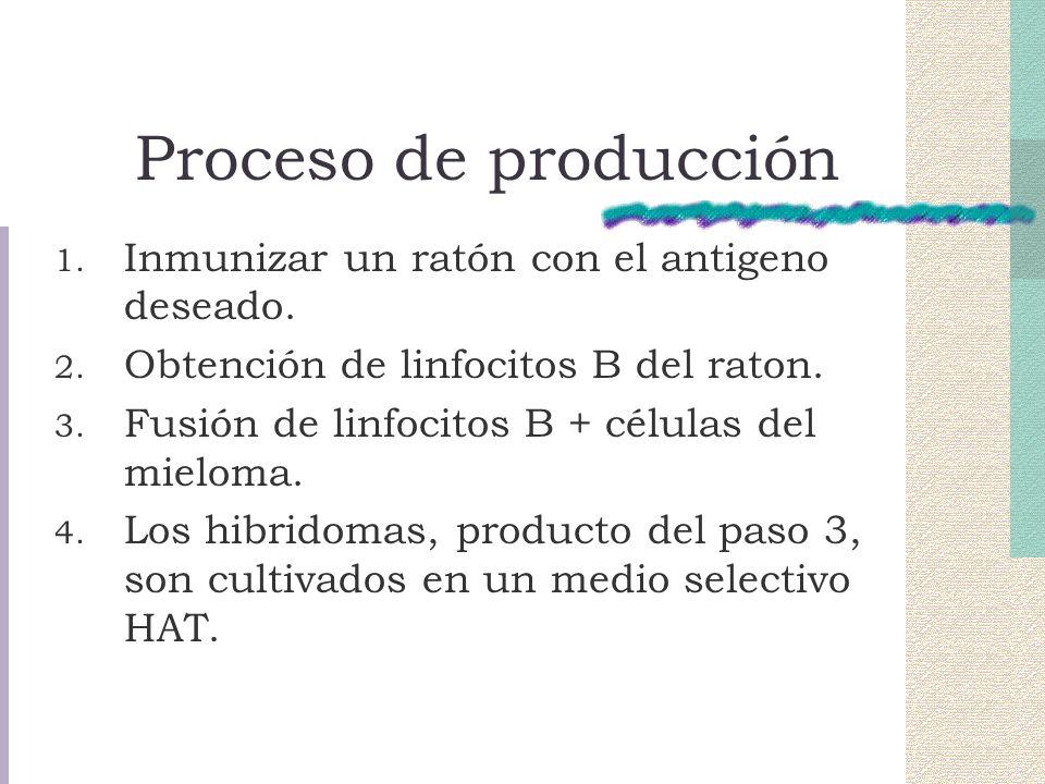 Proceso de producción 1.Inmunizar un ratón con el antigeno deseado.