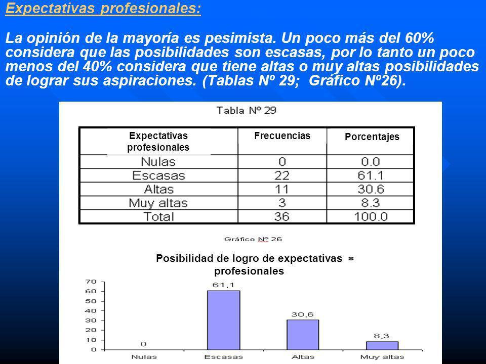 Expectativas profesionales: La opinión de la mayoría es pesimista. Un poco más del 60% considera que las posibilidades son escasas, por lo tanto un po
