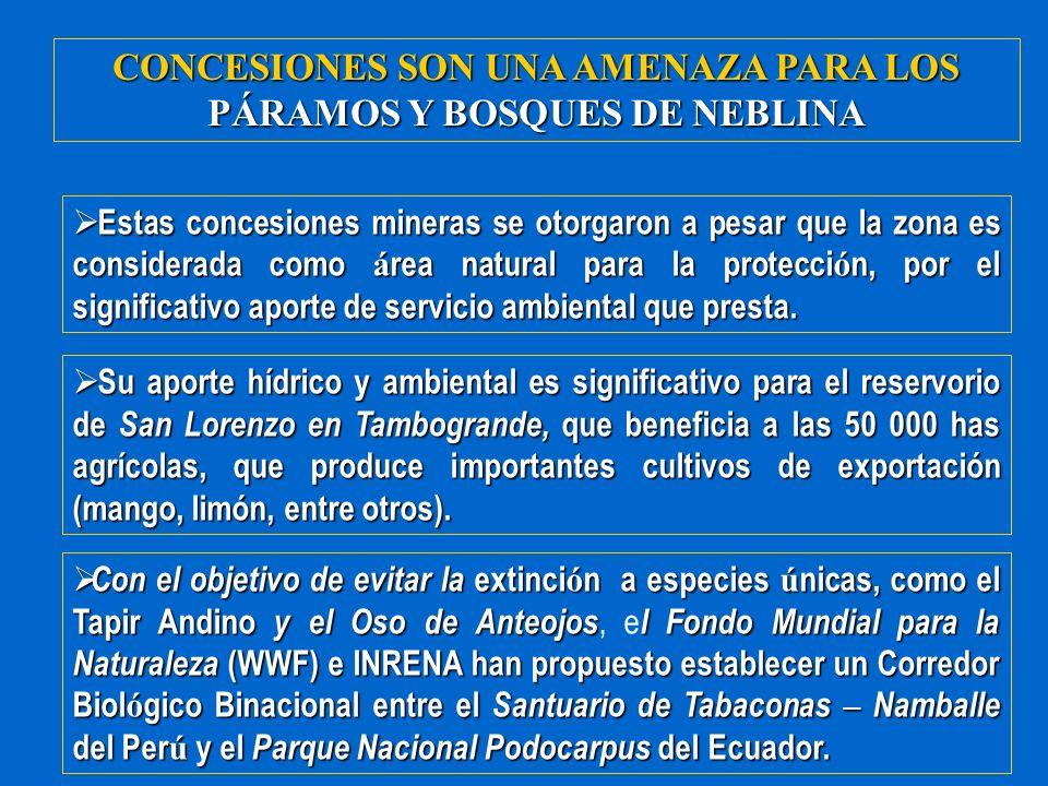 CONCESIONES SON UNA AMENAZA PARA LOS PÁRAMOS Y BOSQUES DE NEBLINA Estas concesiones mineras se otorgaron a pesar que la zona es considerada como á rea