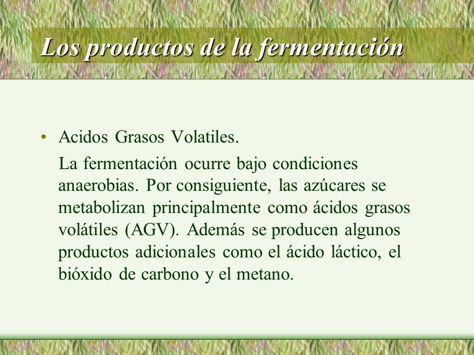 Los productos de la fermentación Acidos Grasos Volatiles. La fermentación ocurre bajo condiciones anaerobias. Por consiguiente, las azúcares se metabo