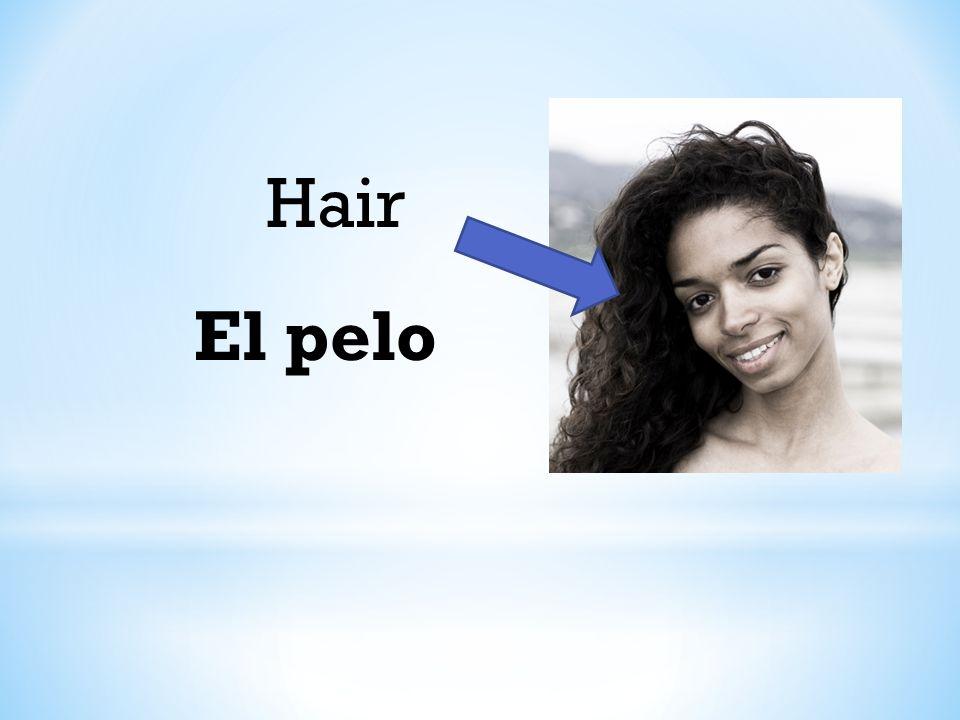 Hair El pelo
