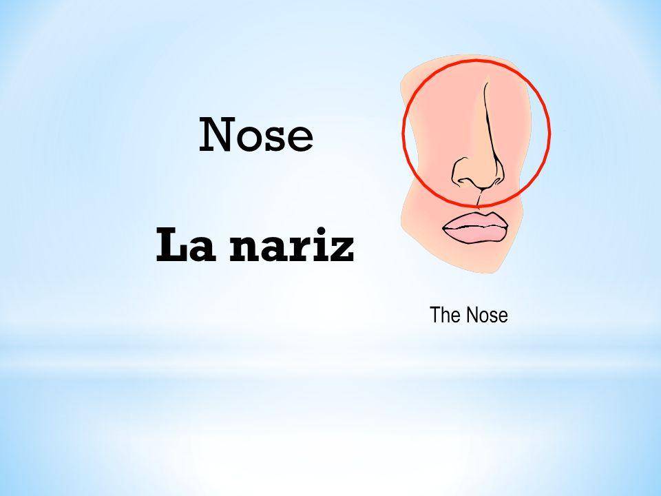 Nose La nariz