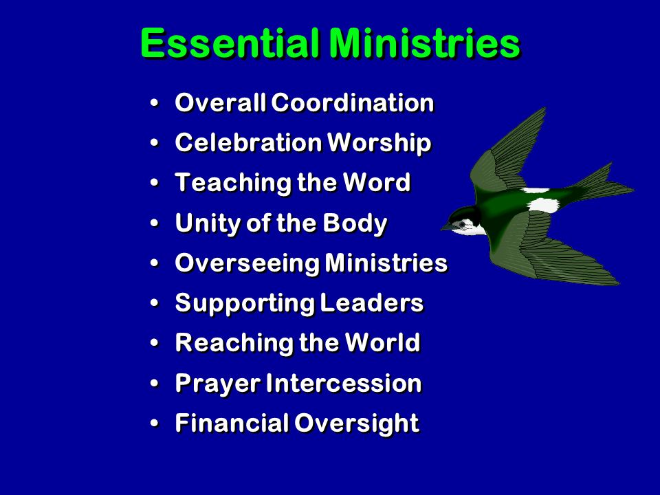All Churches try to organize the SAME ministries & tasks. All Churches try to organize the SAME ministries & tasks. The ministries and tasks are not d