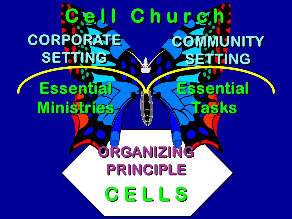 Creative Church Essential Tasks GROUPS GROUPS ORGANIZING PROGRAMS ORGANIZING PROGRAMS LARGE GROUP ORGANIZING STRUCTURE Worship Teaching Ministries Pro