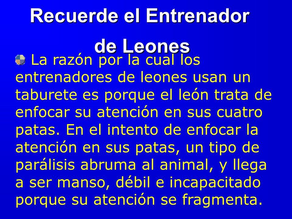Recuerde el Entrenador de Leones de Leones La razón por la cual los entrenadores de leones usan un taburete es porque el león trata de enfocar su atención en sus cuatro patas.