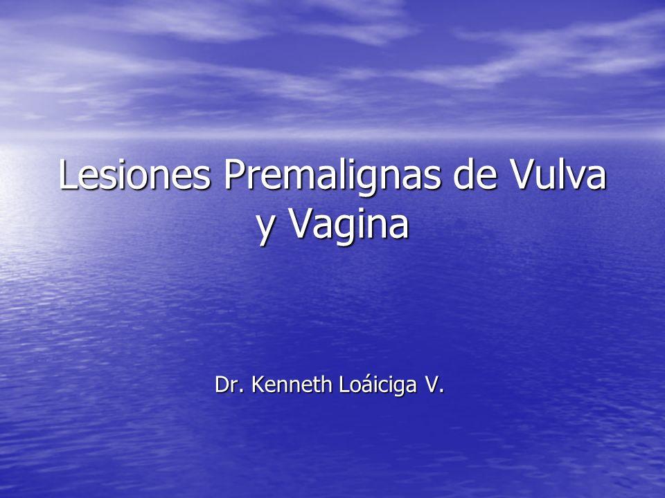 Lesiones Premalignas de Vulva y Vagina Dr. Kenneth Loáiciga V.